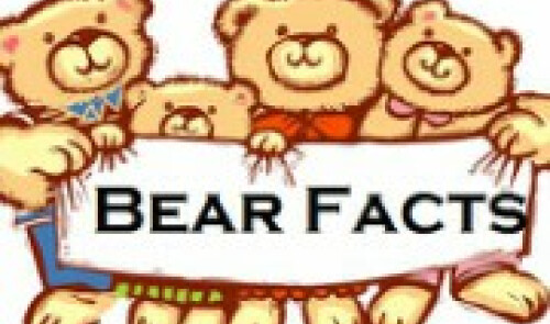Bear Facts Newsletter